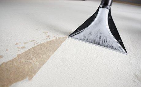 Хімчистка ковроліну та килимів